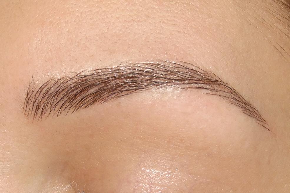 Hairstroke Eyebrow Permanent Makeup By Alexandra Patkos Alexandra